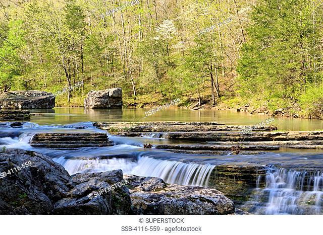 Waterfalls in a forest, Six Finger Falls, Falling Water Creek, Arkansas, USA
