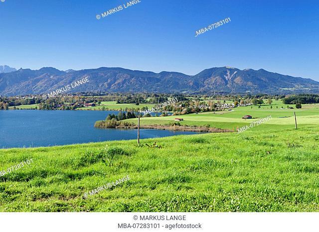 View over the Riegsee to Murnau, Upper Bavaria, Bavaria, Germany
