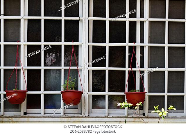 Plant Pots in a Window in Manila, Philippines