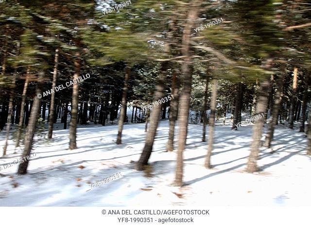 Country landscape Gudar mountains in snow Teruel Aragon Spain