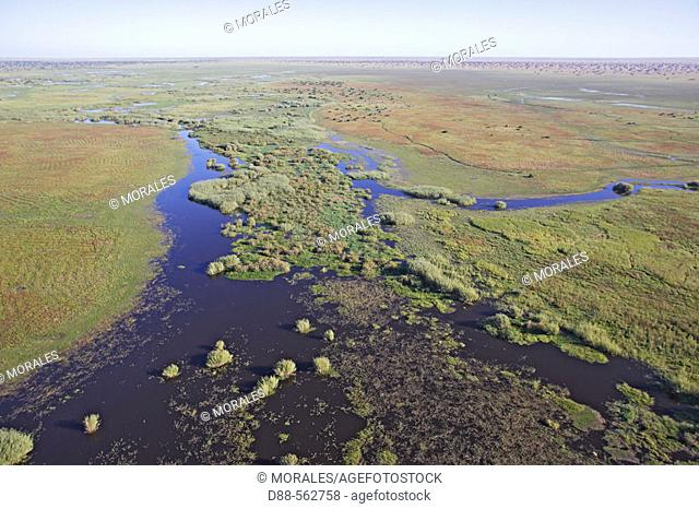 Flight over Bangweuleu marshes. Zambia