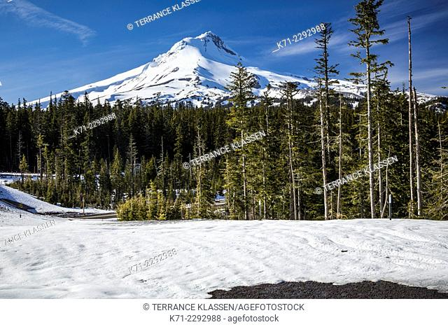 Snow-capped Mt Hood in spring, Oregon, USA