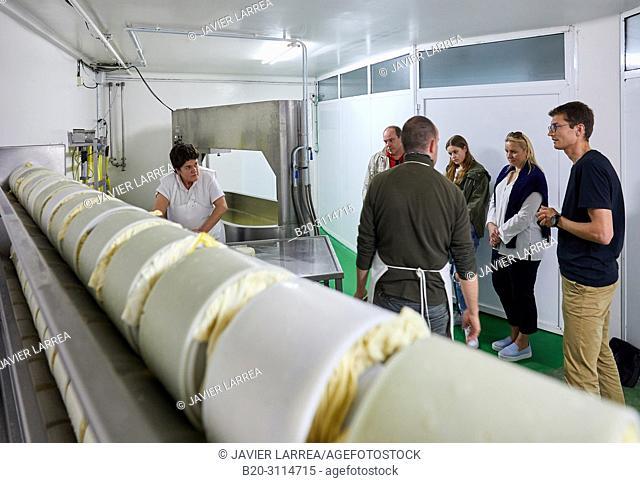 Tour guide with group, Preparation of sheep's cheese, Cheese denomination of origin Idiazabal, Caserio Mausitxa, Elgoibar, Gipuzkoa, Basque Country, Spain