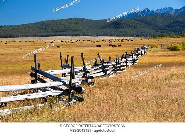 Meadow fence, Ponderosa Pine Scenic Byway, Sawtooth National Recreation Area, Idaho