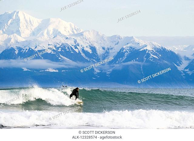 Surfer riding a wave with Fairweather Range in the background, Southeast Alaska; Yakutat, Alaska, United States of America