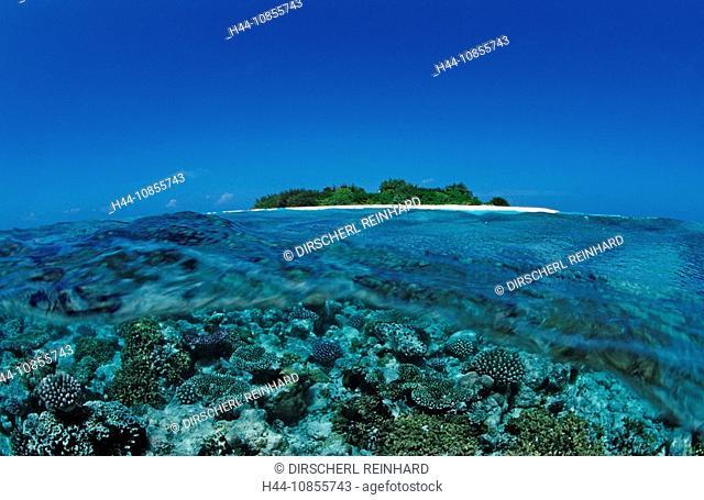 10855743, Maldives, Indian Ocean, Meemu Atoll, isl