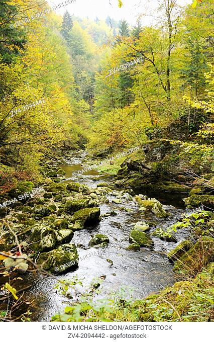 Landscape of the Buchberger Leite in the Bavarian Forest National Park in autumn, Germany