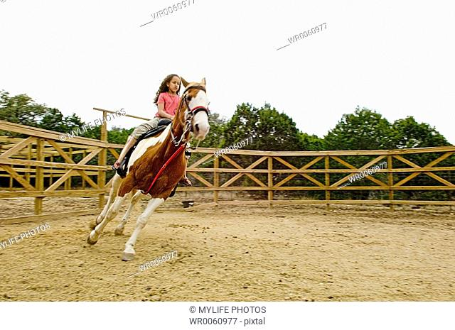 riding in the corral