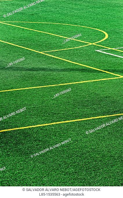 Multi-purpose sports field