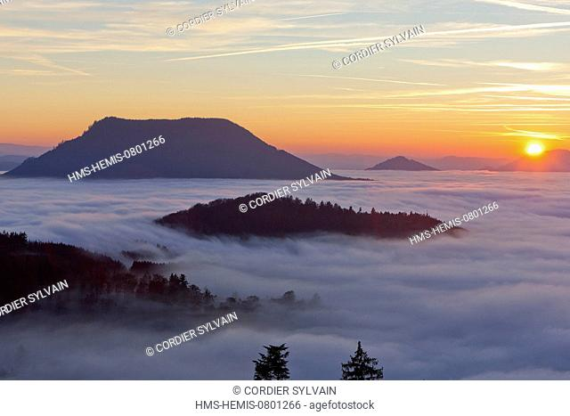 France, Bas Rhin, landscape from the Col de la Charbonniere, forest of beeche and fir trees in the mist