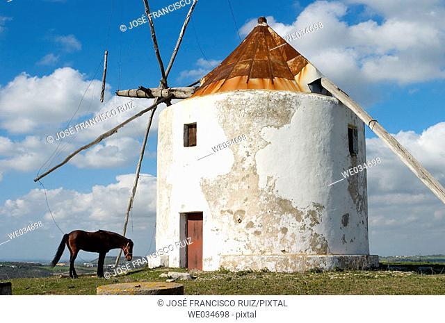 Windmill, Vejer de la Frontera. Cádiz province, Andalusia, Spain