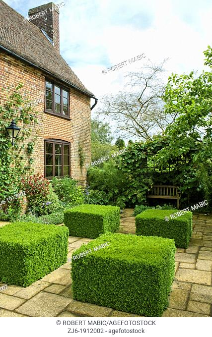Courtyard with clipped Buxus, Kent England