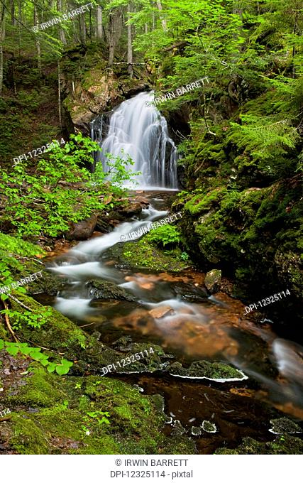 Waterfall on Horse Pasture Brook, a protected wilderness area; Wentworth Valley, Nova Scotia, Canada