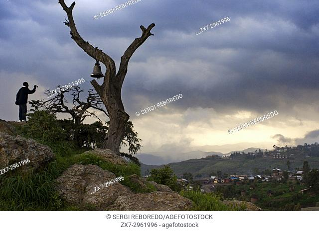 Lalibela, Amhara region, Ethiopia. A man photographing from a hillside mound crowned by an old tree hangs a large bell the town of Lalibela