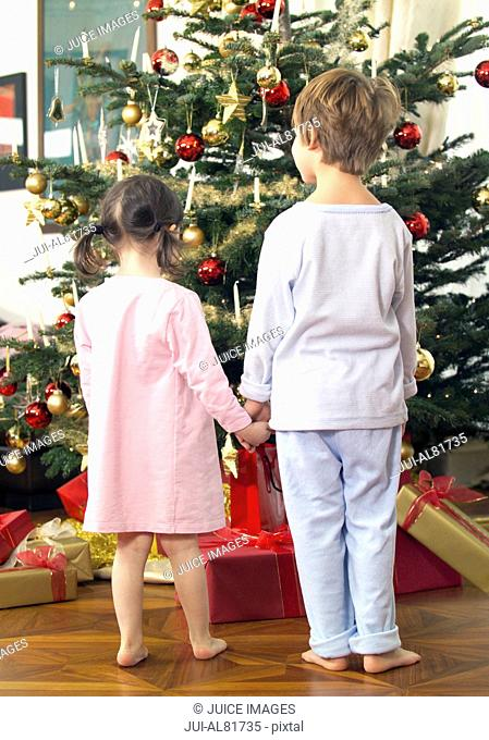 Brother and sister holding hands and looking at Christmas tree