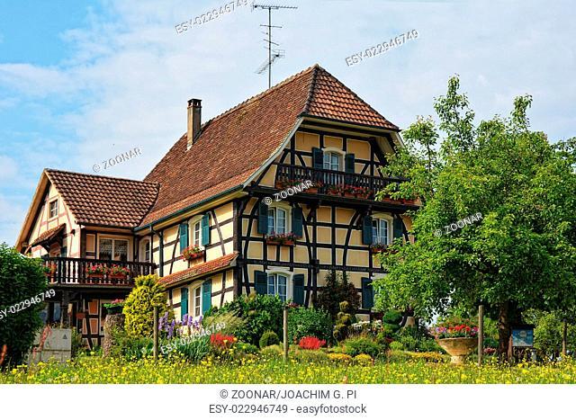 springtime in Alsace