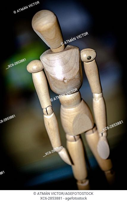 wooden articulated doll