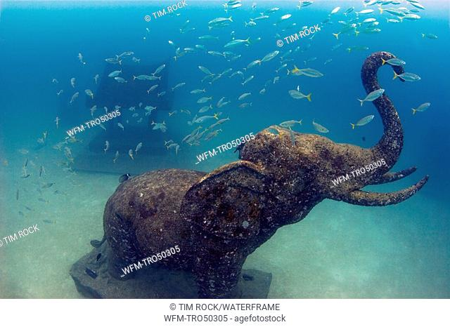 Stone Elephant and Diver, Ko Racha Yai, Phuket, Andaman Sea, Thailand