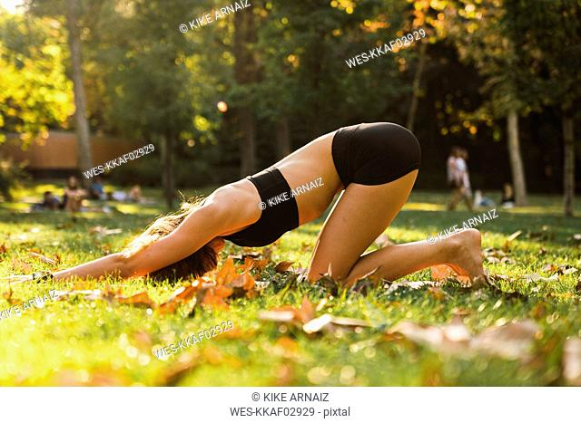 Fit young woman practicing yoga in a park