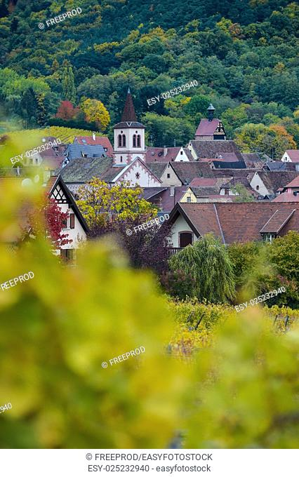 Church and village, Alsace Vineyard, France, Europe