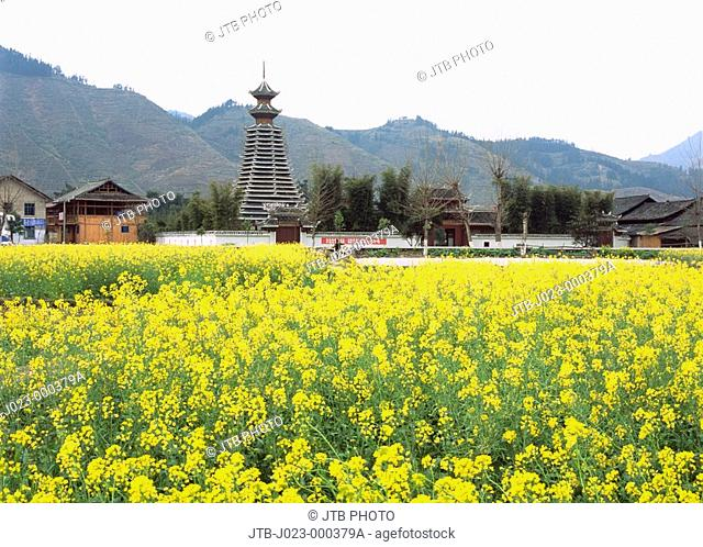 Drum tower, flower, Dongjiang, Rongjiang Prefecture, Guizhou Province, China