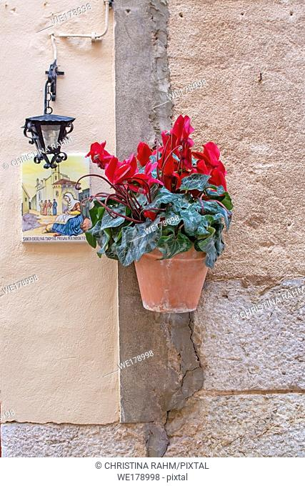 Beautiful terracotta flowerpot with red cyclamen flowers and Santa Catalina Thomas ceramic plate and black iron lamp on stone wall in Valldemossa Mallorca