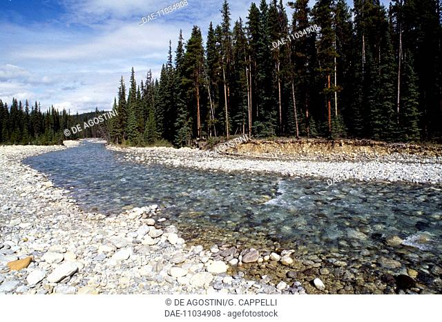 Emeralda River, Yoho National Park (UNESCO World Heritage List, 1990), Rocky Mountains, British Columbia, Canada