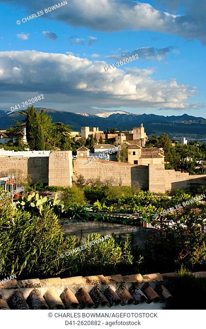 Europe, Spain, Andalucia, Granada, Alhambra, skyline