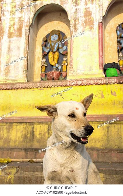 Varanasi, formerly Benares, Uttar Pradesh, India