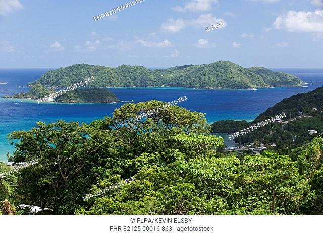 View of forested coastline, looking towards Little Tobago, Speyside, Tobago, Trinidad and Tobago, November
