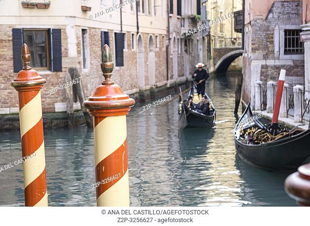 Venice, Veneto, Italy: Castello quarter