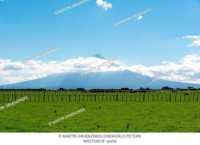 New Zealand, Taranaki, Egmont National Park, view of a mountain in Egmont National Park