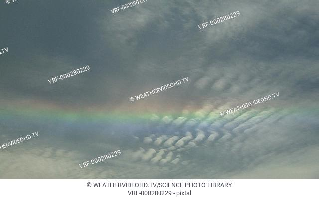 Timelapse footage of a circumhorizontal arc seen in high-altitude cirrocumulus clouds. The spectral colours of the arc are produced by the refraction of...