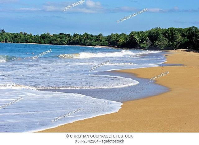 Clugny beach, Basse-Terre, Guadeloupe, overseas region of France, Leewards Islands, Lesser Antilles, Caribbean