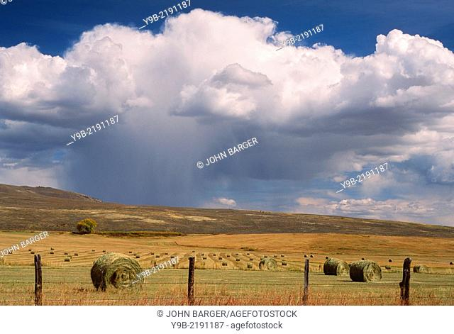 Autumn thunderstorm over rangeland with hay rolls, Gunnison County, Colorado, USA