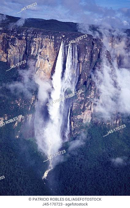 Angel Falls. Canaima National Park. Venezuela