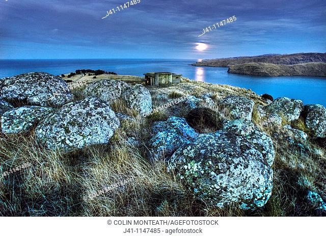 Moonlight over Godley Head near entrance to Lyttelton harbour, WWII gun emplacements in trees below and old observation post in foreground, Christchurch