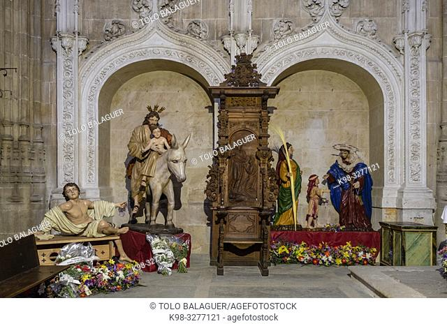 """grupo de """"""""la Borriquila"""""""", Capilla de la Virgen de la Cabeza, Catedral de la Asunción de la Virgen, Salamanca, comunidad autónoma de Castilla y León, Spain"""