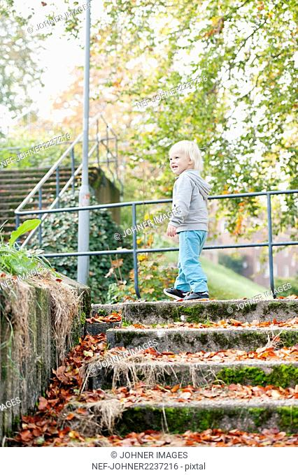 Small blond boy walking in autumn park