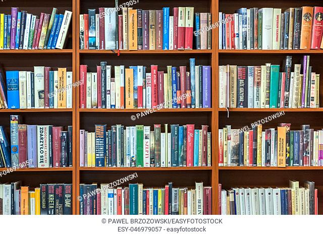 Bookshelf in public library, front view, horizontal