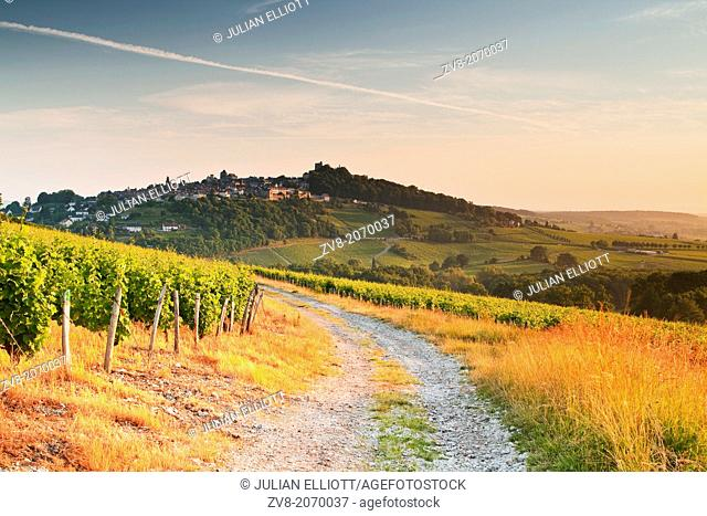 The vineyards of Sancerre in the Loire Valley of France