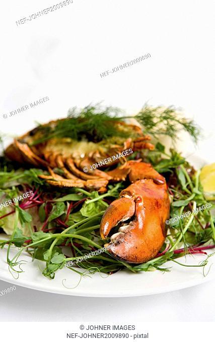 Crayfish claw on salad