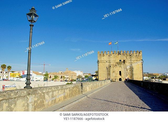 View of the Roman Bridge on the Guadalquivir river and the Calahorra Tower, Cordoba, Andalusia, Spain