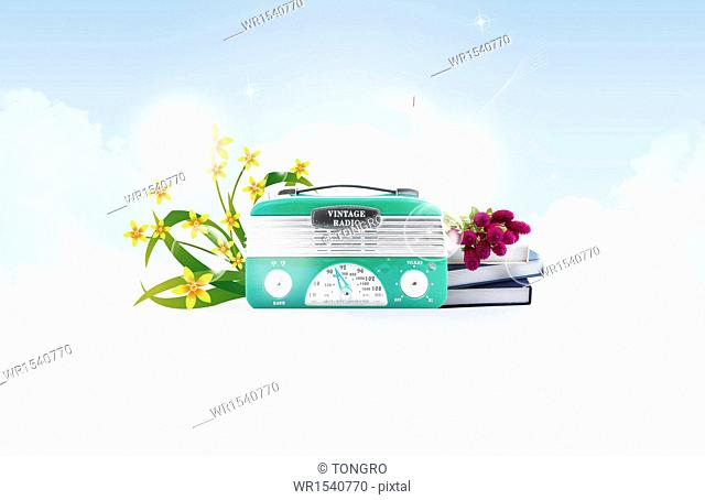 an old style radio next to flowers