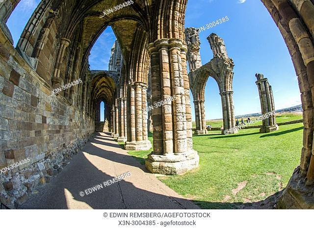 Looking down corridor of the remains of Whitby Abbey, Whitby, Yorkshire, UK