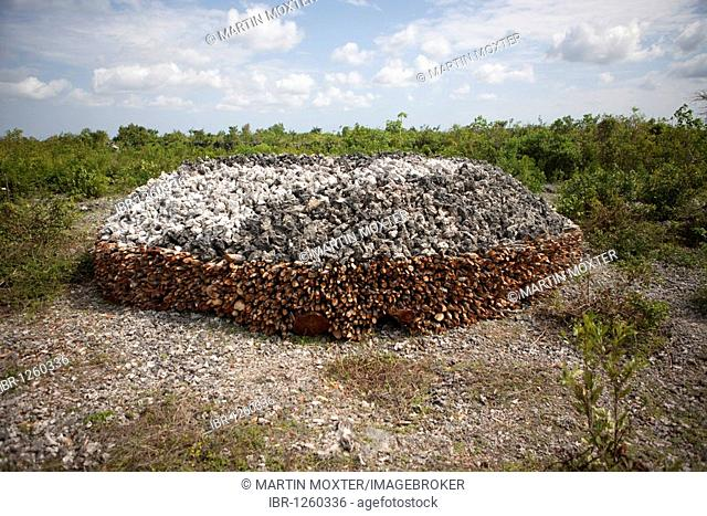 Stacks of coral in a furnace, for the extraction of cement from coral, Jambiani, Zanzibar, Tanzania, Africa