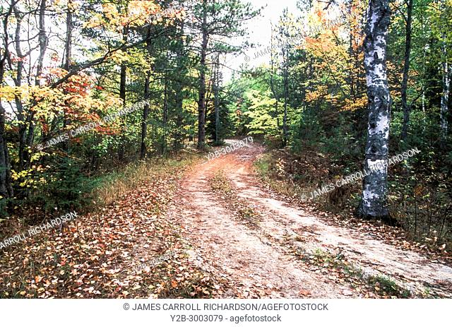 ROAD NEAR THORNTON LAKE in the HIAWATHA National Forest Upper Peninsula Michigan