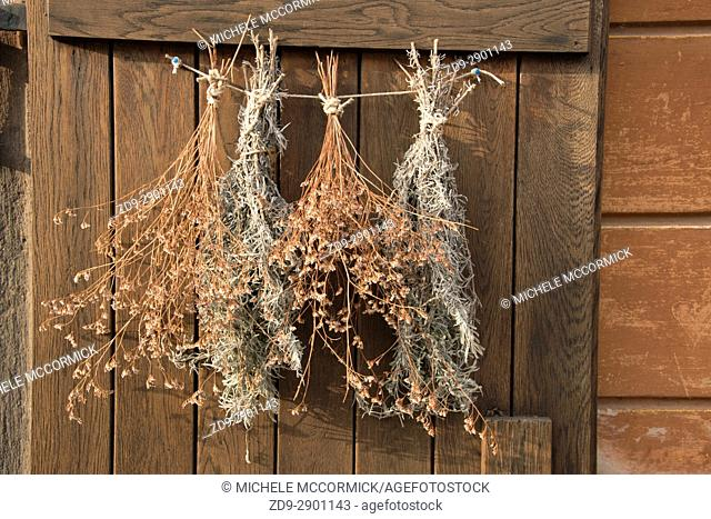 Herbs hang to dry on a doorway at Castle Hill in Budapest