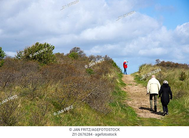 older couple walking at sandy path in the dunes of Texel