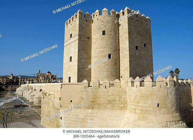 Torre de la Calahorra Tower, Cordoba, Andalusia, Spain, Europe
